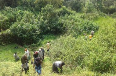 Locals clearing the bush in Buhunga